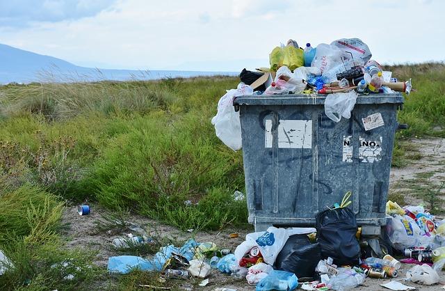 Koľko mikro-častíc plastov skonzumujeme?