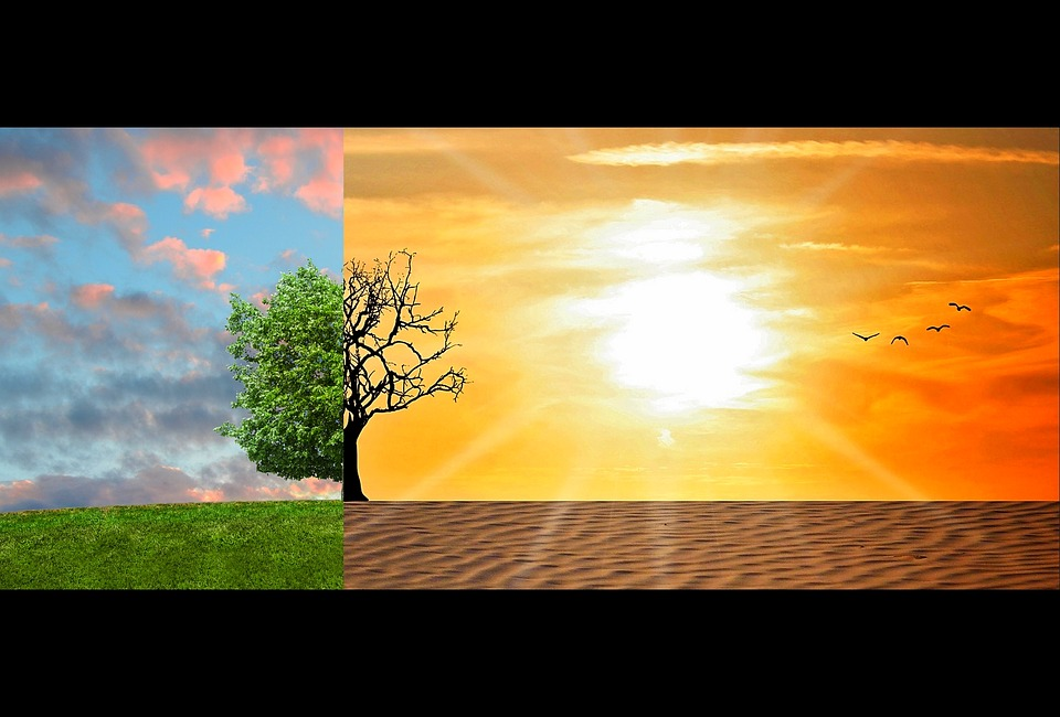 Nový spôsob odstraňovania oxidu uhličitého z ovzdušia
