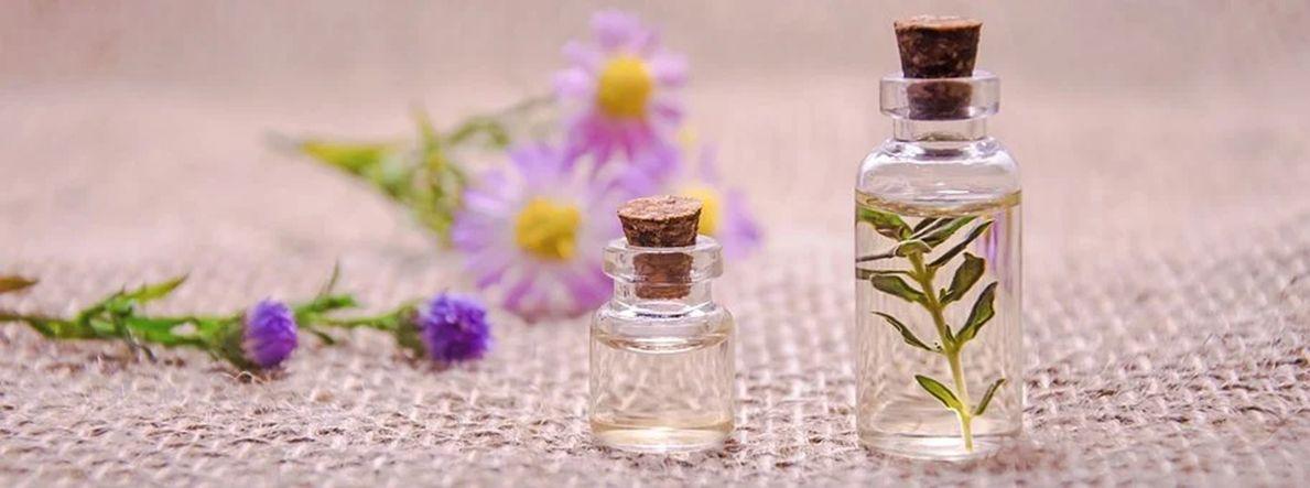 Rastlinné silice – prírodné produkty s obrovským potenciálom využitia