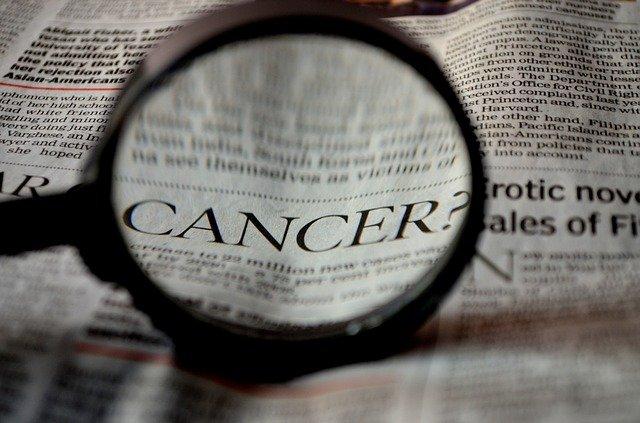 Taxol/paklitaxel alternatívny liek v liečbe rakoviny?