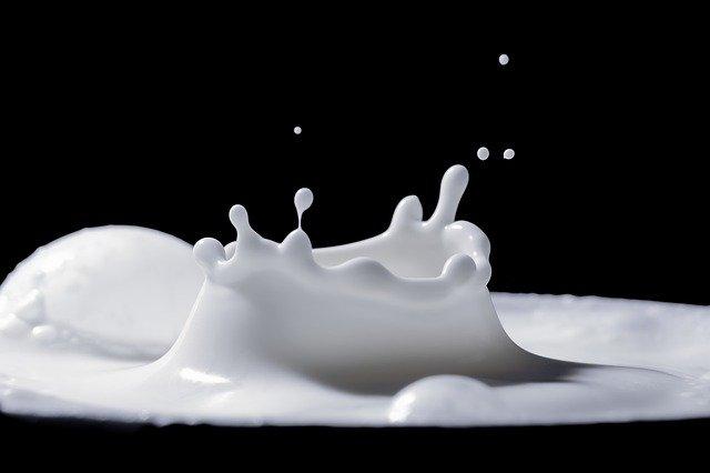 Význam mlieka vo výžive ľudí